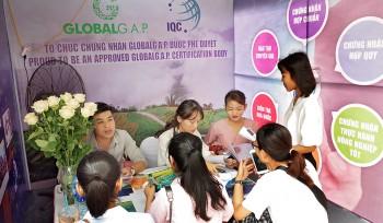 """Gian hàng của IQC tại """"Hội chợ việc làm 2019"""", Học viện Nông nghiệp Việt Nam."""