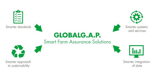 Tiêu chuẩn GLOBALGAP được kỳ vọng là Giải pháp Đảm bảo Trang trại Thông minh
